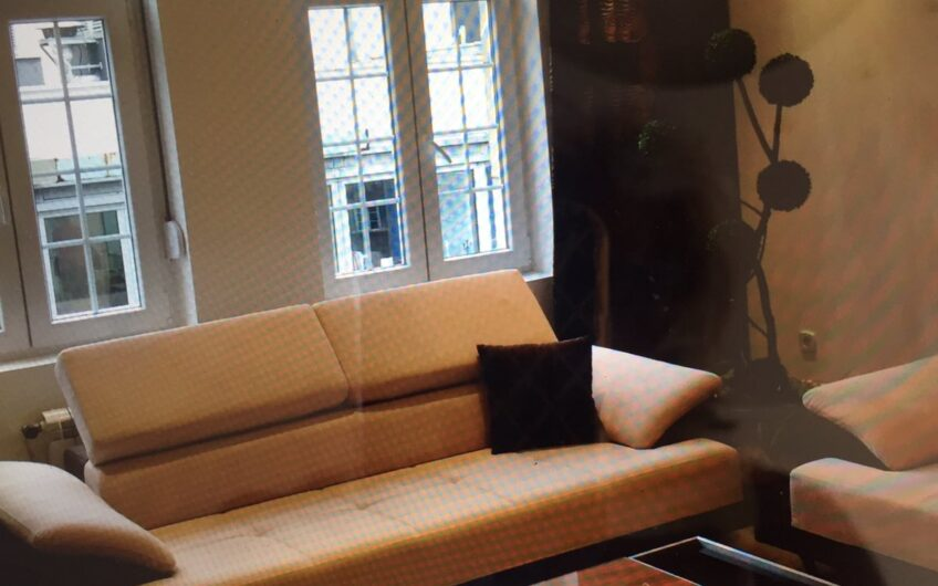 Trosoban namešten stan u strogom Centru, lux